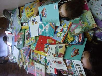 meus_livros