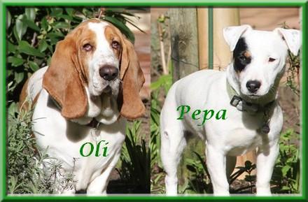 Oli_Pepa_quadro