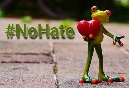 """uma rã transporta um coração por um caminho de jardim e as palavras """"não odiar"""""""