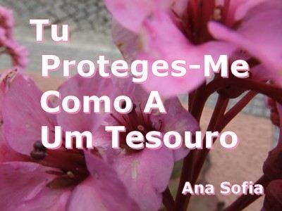 flores rosas de fundo com a frase: Tu Proteges-me como a um tesouro